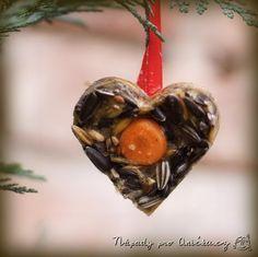 Zimní tvoření s dětmi: krmení pro ptáčky Turtle, Crafts For Kids, Christmas Ornaments, Holiday Decor, Winter, Animals, Tvar, Carnival, Crafts Toddlers