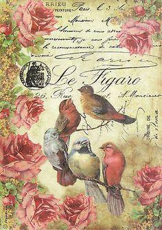 Ricepaper/ Decoupage paper, Scrapbooking Sheets /Craft Paper Le figaro Birds in Crafts, Cardmaking & Scrapbooking, Decoupage | eBay
