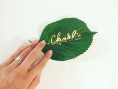 Hand lettered name on a hydrangea leaf! Place cards and escort cards can literally be written on anything.