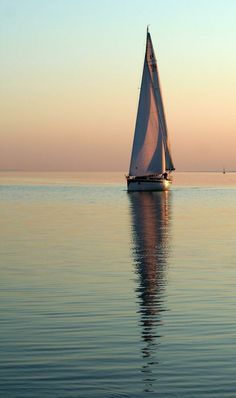 Sailing Calm waters and clear evening sky Boat Art, Boat Painting, Evening Sky, Yacht Boat, Sail Away, Catamaran, Belle Photo, Sailing Ships, Ocean Sailing