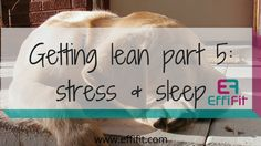 6 steps to getting lean and healthy – Part 5: stress management and sleep   Let's address the elephant in the room: Stress management and sleep. And if both of these are poor, you're really going to struggle to get … Read More