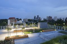 Image 16 of 32 from gallery of Rooftop Park / RDR arquitectos. Photograph by Javier Agustín Rojas Roof Design, Garden Bridge, Rooftop, University, Outdoor Structures, Park, Architecture, Gallery, Outdoor Decor