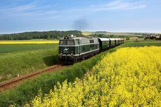 Stuff To Do, Things To Do, Vienna, Austria, Train, Japan, Beautiful, Bike Trails, National Forest