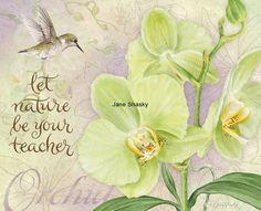 ❤️Jane Shasky ~ botanical orchid