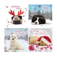 Christmas Pups Bumper Box of Cards // Christmas 2016 at the Owl Barn