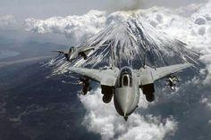 Grumman F14 Tom Cat