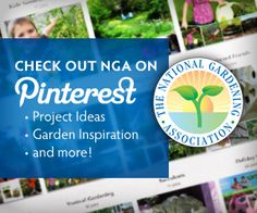 Join us on Pinterest! This site has a good weed library. Helpful if you planted perrenials and