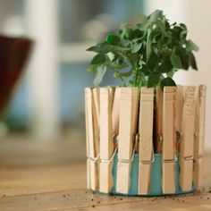 Everyone knows a tuna can and clothespins make for a perfect planter. Oh, you didn't? Discover this magical method.