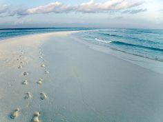 Essential Maldives (COCOA ISLAND/MALDIVES)