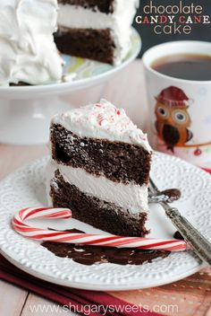 Chocolate Candy Cane Cake: no one will know it started from a box mix! So rich, fudgy, and full of peppermint candy!