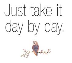 Just take it day by day #mrowlie
