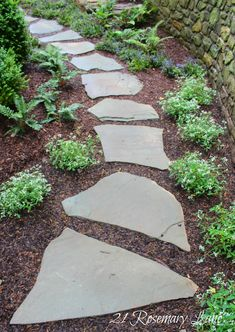 We can reuse our flagstones to make steps for the back corner if we decide to build up a tiered garden back there.