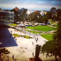 47 Best Our Beautiful Campus images