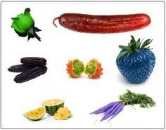Какая радуга на вкус? Самые необычные по цвету растения | Agro2b