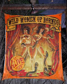 Theatre Bizarre - Wild Women by Patricia Drury, via Flickr Scary Circus, Creepy Carnival, Circus Art, Halloween Carnival, Circus Theme, Halloween Themes, Vintage Circus Costume, Vintage Circus Posters, Carnival Posters
