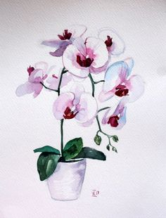 Flower fine art Orchid watercolor art Original watercolor illustration Floral painting flower Wall a - kunst Art And Illustration, Floral Illustrations, Watercolor Illustration, Art Floral, Watercolor Flowers, Watercolor Art, Orchids Painting, Painting Art, Paintings