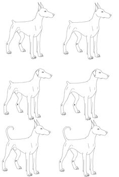 dobrman dog template - Google Search