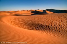 Wondering around in the dunes of morocco. join us on our  next photo tour in October. http://ift.tt/2mtHsJI