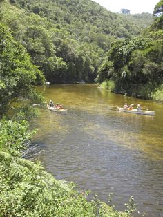 Rowing at Ebb Flow near Wilderness. Places Ive Been, Places To Go, Provinces Of South Africa, Xhosa, Camping And Hiking, Afrikaans, Rowing, Glamping, Wilderness