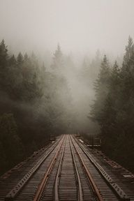 Train tracks on a foggy morning Trains, Fuerza Natural, Cool Stuff, All Nature, Foto Art, Train Tracks, Pics Art, Belle Photo, Pretty Pictures