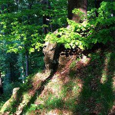 14 gyönyörű hegyvidéki kirándulóhely itthon
