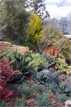 Roger's Gardens Landscapes