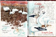 Cathy Johnson & Friends-Artists from all over share their sketching from life, on location.