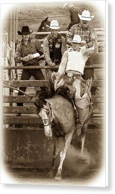 "#BroncRiding Canvas Print featuring the photograph ""What Are Friends For?"" by Caitlyn Grasso. #cowboy #friends #western"