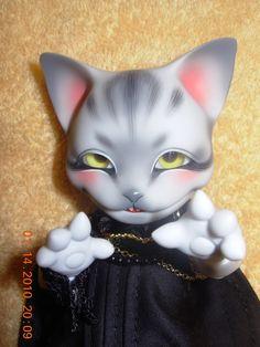 PIPOS Cheshire cat - Recherche Google