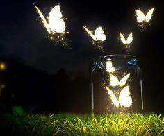 Butterfly Art Framed Wallpaper Free Desktop Mobile Wallpaper Res: Added on June 23 Tagged : Wallpaper Framed at MoshLab Wallpaper Nature Wallpaper, Mobile Wallpaper, Iphone Wallpaper, Wallpapers Android, Locked Wallpaper, Live Wallpapers, Butterfly Art, Beautiful Butterflies, Beautiful Images