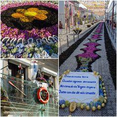 """Rues de Viana do Castelo revêtues de """"tapis fleuris"""" (fleurs et sel, travail effectué dans la nuit par les résidents) en l'honneur de la patronne des pêcheurs Nossa Senhora da Agonia (fêtée en Août à Viana do Castelo)"""
