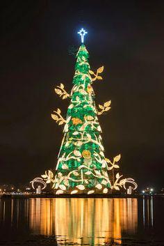 rio de janeiro brazil christmas guiness record christmas decorations xmas tree
