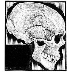 Skull, Lithography by Maurits Cornelis Escher (1898-1972, Netherlands)