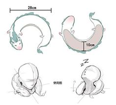 http://www.amazon.com/Anime-Miyazaki-Spirited-Pillow-U-Shape/dp/B01713VUIE