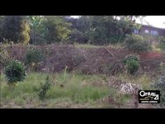 Vacant Land For Sale in Chelmsfordville, Gillitts, KwaZulu Natal, South ...