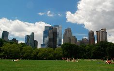 Central Park Conservancy free tours