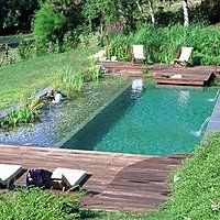 La piscine naturelle, aussi appelée baignade naturelle, est une alternative écologique aux piscines traditionnelles. Dans une baignade naturelle, finis le chlore qui pique les yeux et les produits chimiques. L'eau reste pure, naturellement. Explications.