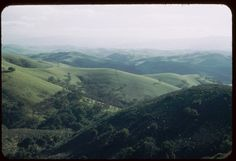 Green hills of Contra Costa county California from Mount Diablo road.