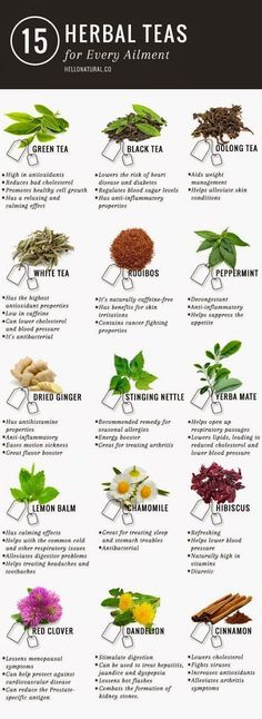 Green tea is not the only tea with promising (and according to many sources, PROVEN) health benefits. This infographic illustrates and describes 14 other healing herbal teas. http://www.detoxmetea.com www.detoxmetea.co...