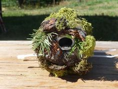 "Little Wren Birdhouse from a Soda Can! The ""house"" is an empty soda can, perfect size for tiny wrens that enjoy close quarters. Pop top is a great perch, larger birds can't get in the 1"" door. Use spray adhesive to cover with bark, twigs, moss etc."