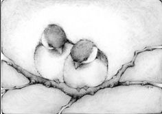 Oh my gawd i love the beauty and simplicity of this image chickadee dogwood… Bird Drawings, Animal Drawings, Cute Drawings, Pencil Drawings, Watercolor Bird, Watercolor Paintings, Chickadee Tattoo, Drawing Projects, Bird Pictures