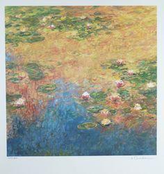 Waterlily Pond VI by Ander Kase