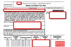 Federal Tax Lien - What to do with an IRS Tax Lien