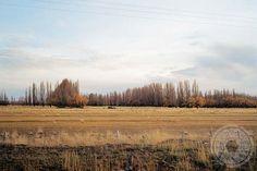 """""""Sarmiento 01"""", Ciudad de Comodoro Rivadavia, Provincia de Chubut, Patagonia, Argentina, 2014 - Pablo Saborido."""