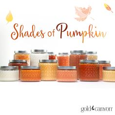 With 6 different pumpkin fragrances, Gold Canyon has the shade of pumpkin just for you!