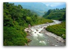 The origin of the rivers written about in John 7:38, is the river that flows from the throne of God. It is the life of God Himself. As we worship God, His river flows. As we prophesy, His river flows. As we speak the Word, His river flows up and out of us.