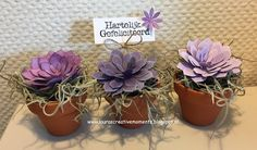 Laura's Creative Moments: Succulent Garden II