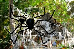 Spiders for a Vampire Scary Party Decoration by @Fantasypartys