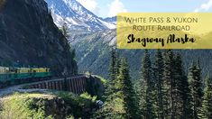 Riding the White Pass & Yukon Route Railroad in Skagway, Alaska. One of the best excursions for your Alaska cruise! Alaska National Parks, Yellowstone National Park, Skagway Alaska, Visit Alaska, Norwegian Cruise Line, Alaskan Cruise, Viewing Wildlife, Tennessee Vacation, Cades Cove