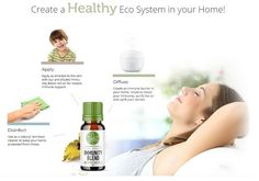 Total Defense Immunity Blend that boosts your immune system & allows your body to fight against viruses & bacteria. it also reduce chronic stress & fatigue. Oregano Essential Oil, Essential Oil Blends, Essential Oils, Total Defense, Council Of Europe, Chronic Stress, Active Ingredient, Immune System